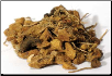 Solomon's Seal Root Cut 1 oz (Polygonatum species)